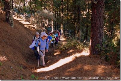 3351 Cueva Grande-Llanos Pez
