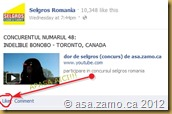 screenshot Selgros Romania