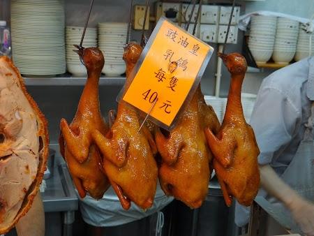 Anul Nou Chinezesc: Porumbei de Pekin