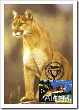 2054_Puma-fata