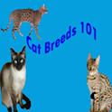 Cat Breeds 101 icon