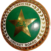 Pak Cricket, Best Cricket Game