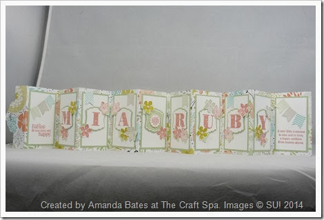 Scallop Tag Concertina Card,2014_03_Baby Girl Mia Ruby 017