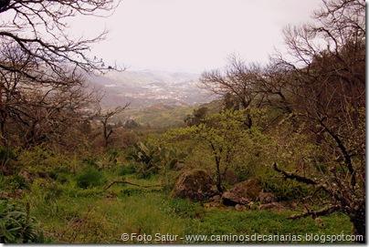 5314 La Pasadera-Roque Carnero