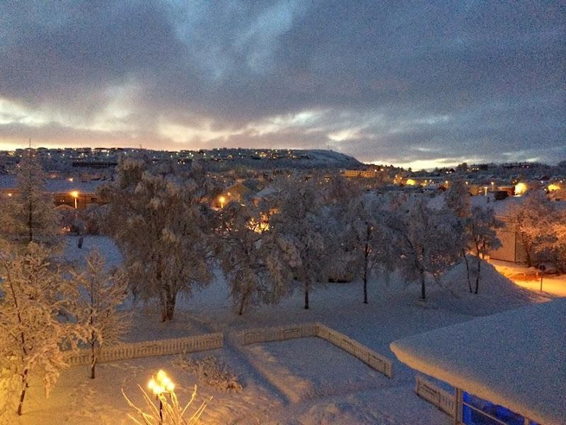 norway-the-final-step-viaggio-travel-fashion-blog-grande-nord-hotel-ghiaccio-renna