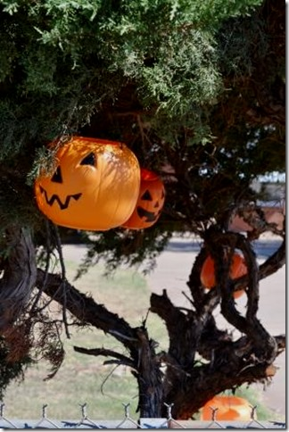 DIY Halloween decorating, pumpkins