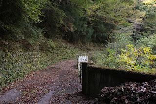 横沢川第一堰堤へと通じる道