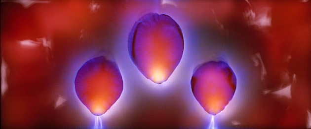 Kirlian-photography-11