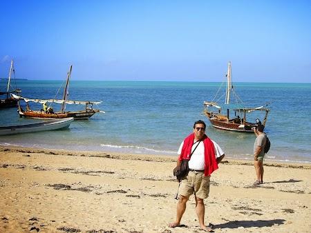 Safari Blue Zanzibar.
