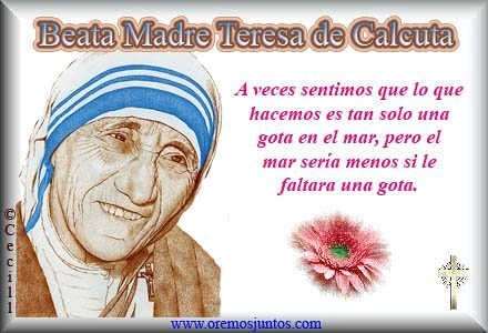 Frase Madre Teresa 3 Quotes Links