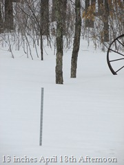 Snowstick 13 inches