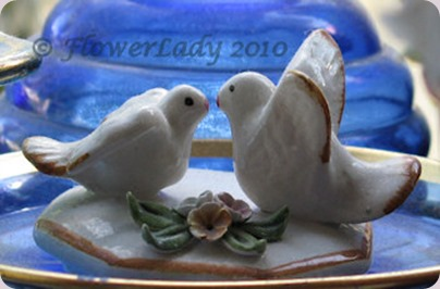 09-05-lovebirds9