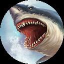 Image Google de Mini shark62