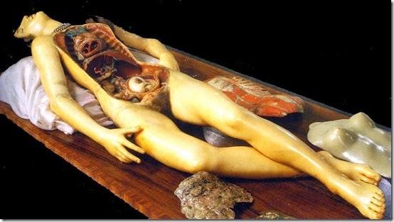 Venerina cera anatomica di Clemente Susini, Bologna (medio)
