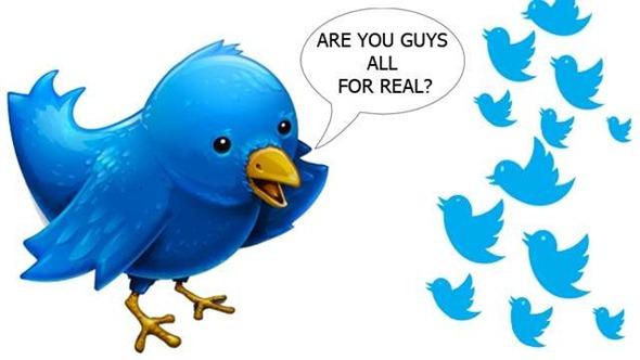 fake_twitter_followers