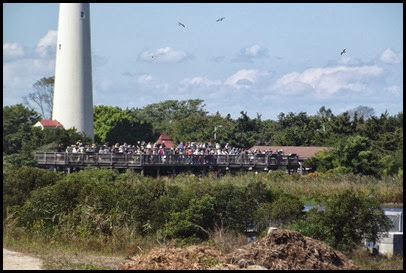 Cape May Lighthouse  & TNC walk 060