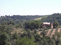 La Selva Farnia_Montaione_9