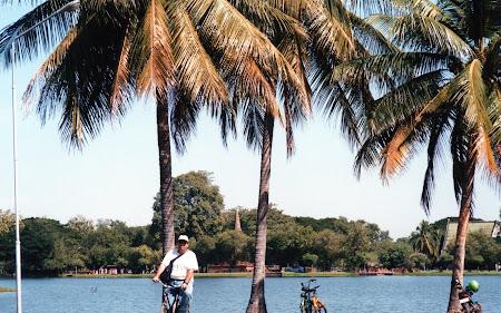 144. pe bicicleta sub palmieri.jpg