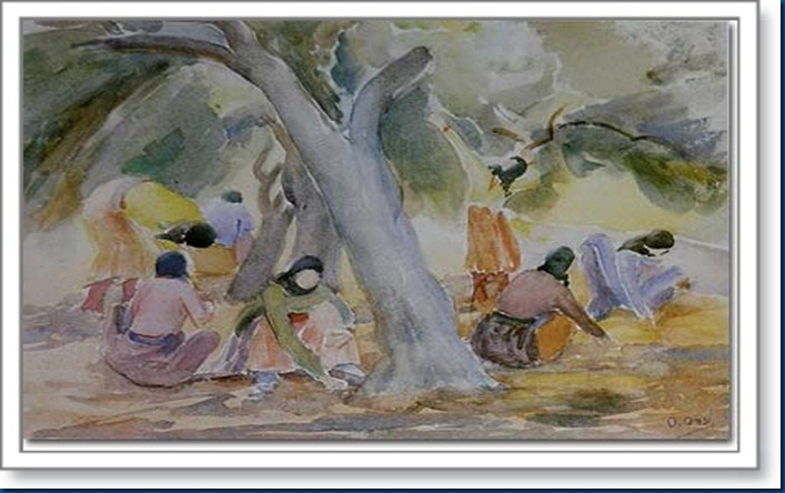 Olive-Picking, watercolor, 34 x 49 cm, collection Mr_ Farouk Abillamah