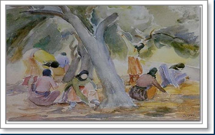 Olive-Picking, watercolor, 34 x 49 cm, collection Mr_ Farouk Abillamah