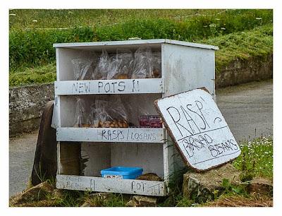 Guernsey - Angebot von Gartengemüse