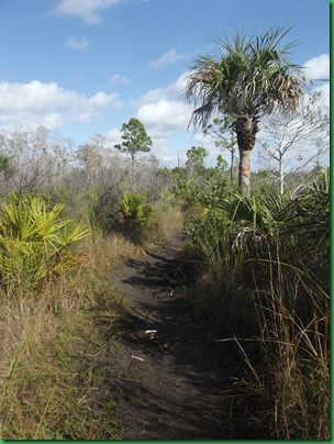 Casita & AM Florida Trail hike 020