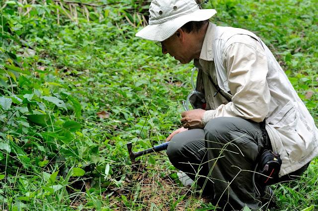 Coléoptériste sur le terrain. Ebogo (Cameroun), 19 avril 2013. Photo : Daniel Milan