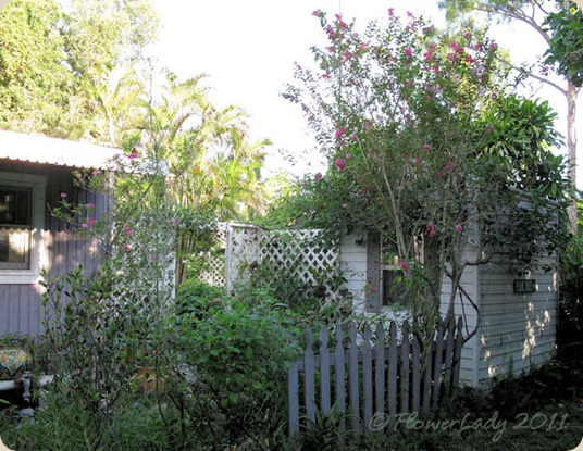 08-29-shed-garden