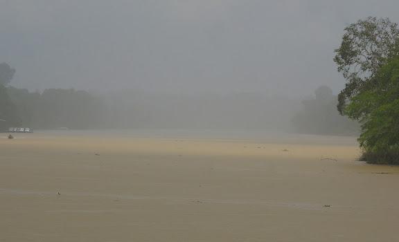 La Kinabatangan sous la pluie. Sukau, 8 août 2011. Photo : J.-M. Gayman