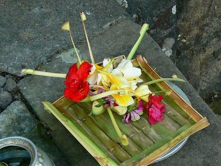 13. Flower offerings.JPG