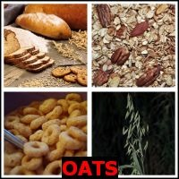 OATS- Whats The Word Answers