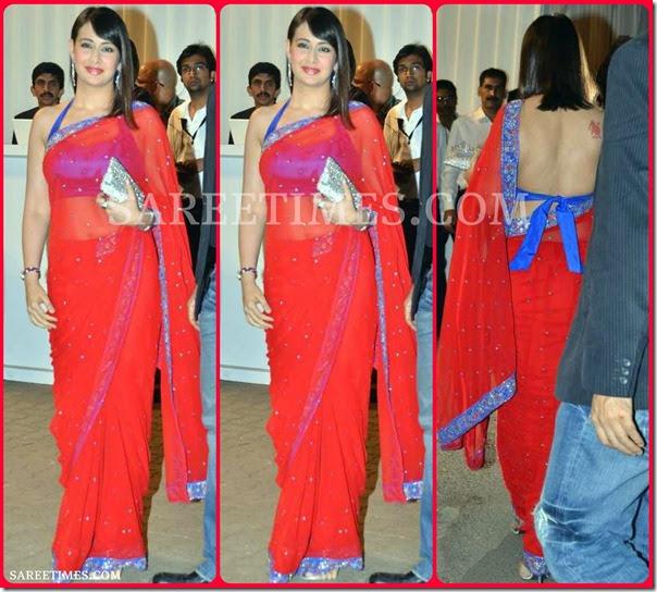 Preeti Jhangiani In Embroidery Saree