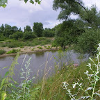 Loire au niveau d'Épercieux-Saint-Paul, amont, rive droite photo #1010