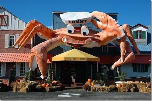 Restaurant Myrtle Beach Boardwalk The Best Beaches In World