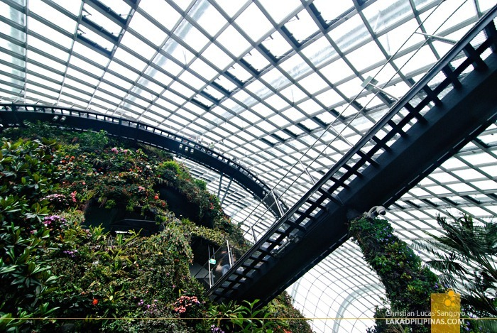 Cloud Forest Floating Walkways at Gardens by the Bay