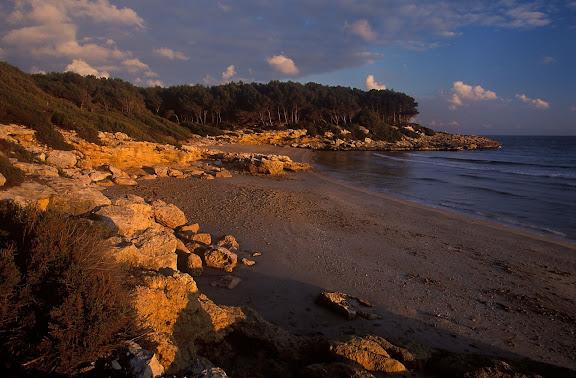 Cala Calabeig o de la Roca Plana, platja nudista, espai protegit del Bosc de la Marquesa,  Tarragona, Tarragonès, Tarragona 2000