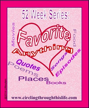 52 Week Series Favorite Anything www.circlingthroughthislife.com