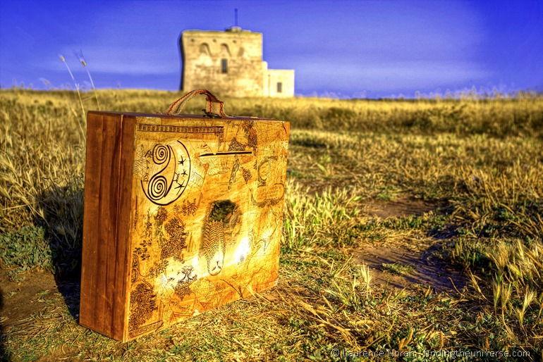 Suitcase in a field