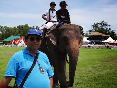 29. Finala polo pe elefanti Hua Hin.JPG
