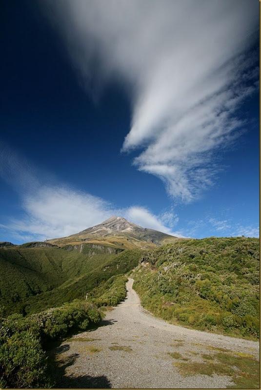 Taranaki Trail Begins