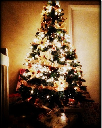 ♥ Wordless Wednesday–Oh Tannenbaum ♥