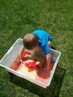 Checking out a Canada Day sensory bin from And Next Comes L