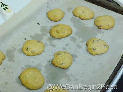 Apr 30 GF chocolate chip cookies 002
