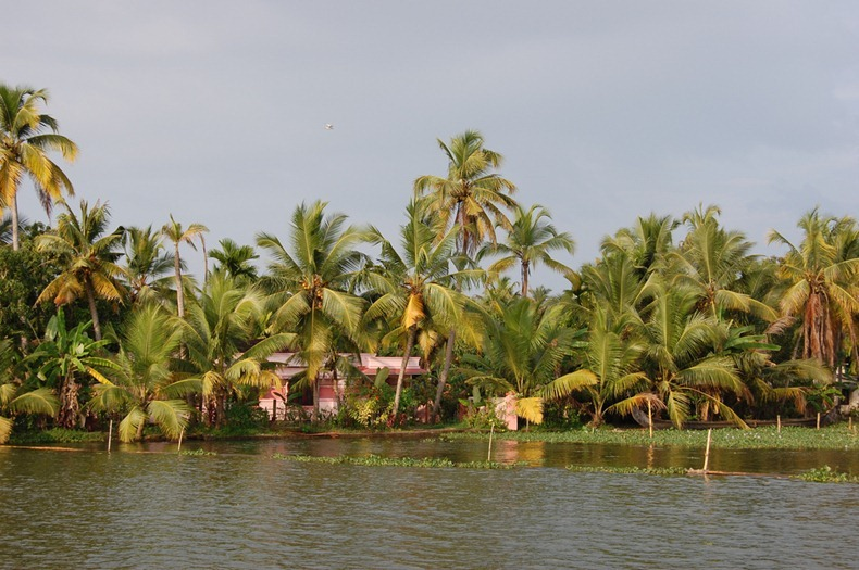 kerela-backwaters-10