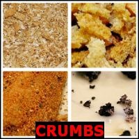 CRUMBS- Whats The Word Answers