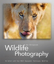 20111218-Wildlife-Photography-Free-Download-01