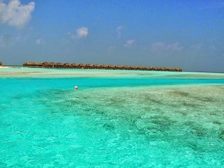 Luna de miere Maldive: Apa Maldive