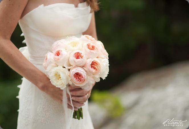 02_david-austen-roses-emily-carter