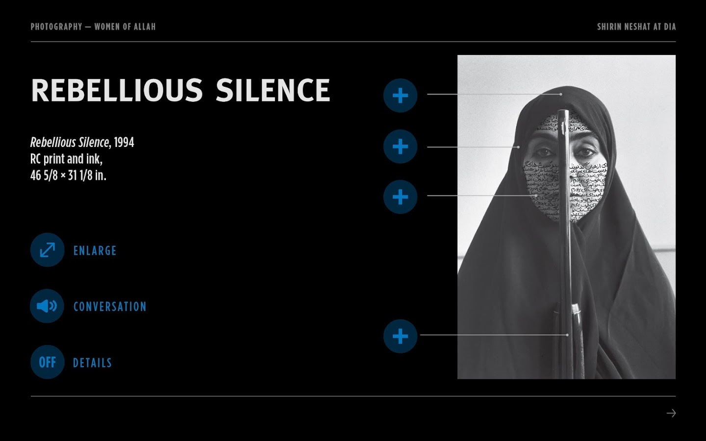 Shirin Neshat at the DIA - screenshot