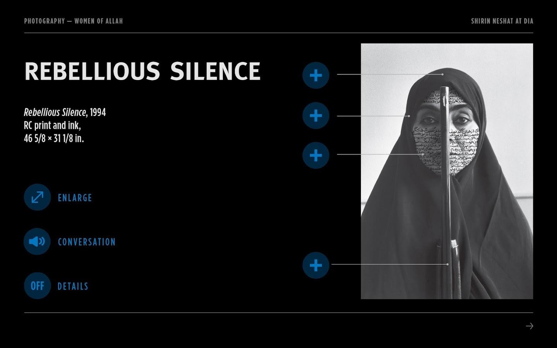 Shirin Neshat at the DIA - screenshot
